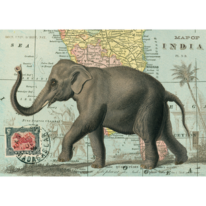 An art print and paper wrap which features an elephant on a background with the map of india