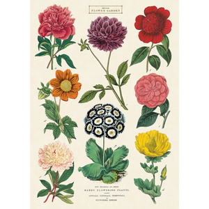 An art print and paper wrap which features various types and color of flower