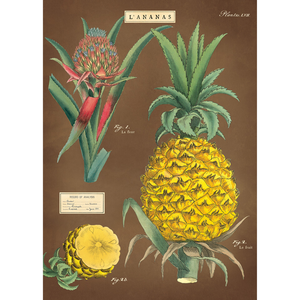 An art print and paper wrap which features a pineapple illustration on a brown background
