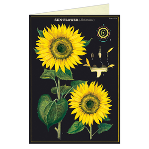 Vintage greeting card featuring sunflowers, on a black background.