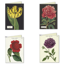 Load image into Gallery viewer, Cavallini & Co. Botanical Boxed Note Cards
