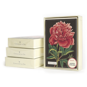 Cavallini & Co. Botanical Boxed Note Cards