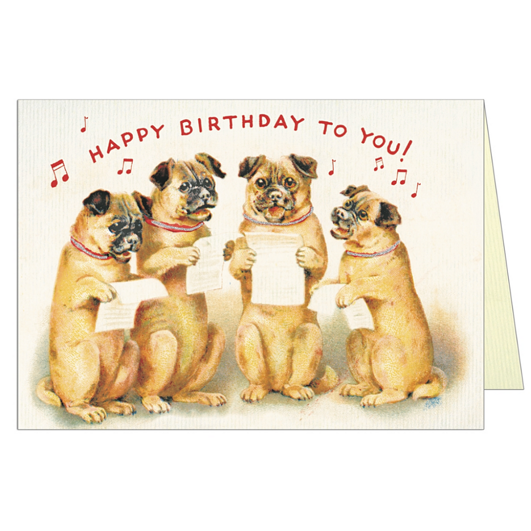 Happy Birthday Dog 4 Greeting Card