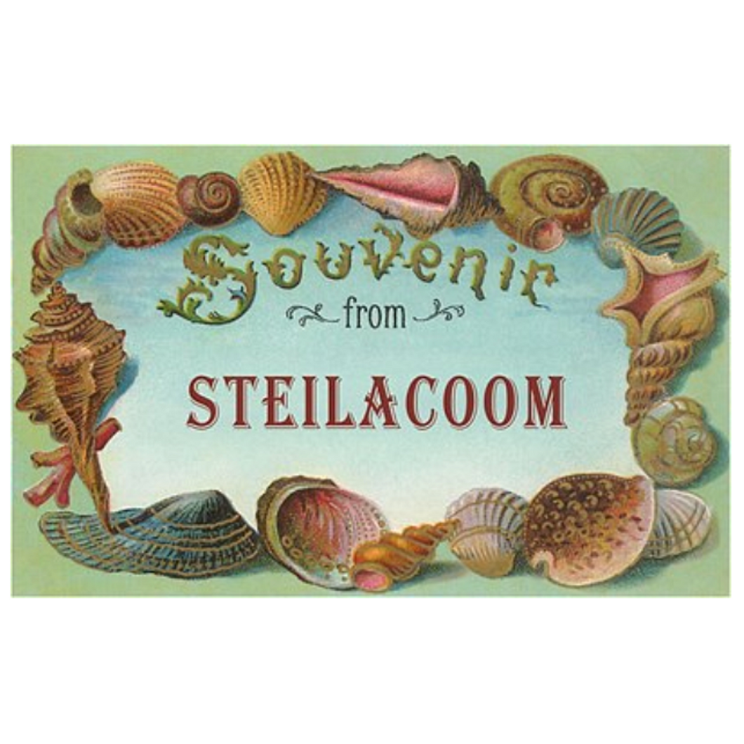 Found Image Postcard Souvenir from Steilacoom