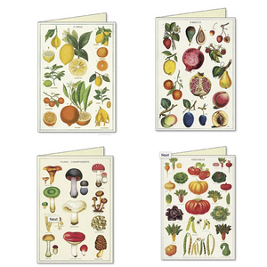 Cavallini & Co. Jardin Boxed Note Cards