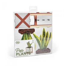 Load image into Gallery viewer, Pop Plants Desk Caddy Snake