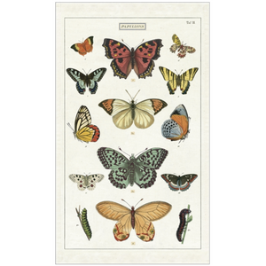 Cavallini & Co. Butterflies Tea Towel