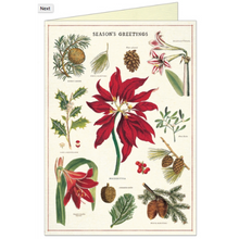 Load image into Gallery viewer, Cavallini & Co. Botanica Christmas Boxed Note Cards