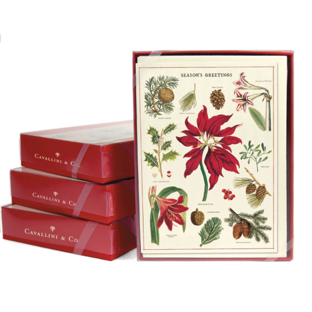 Cavallini & Co. Botanica Christmas Boxed Note Cards
