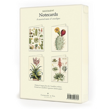 Load image into Gallery viewer, Cavallini & Co. Succulents Boxed Note Cards