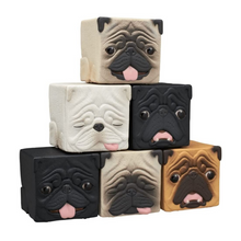 Load image into Gallery viewer, Kitan Club: Cube Pug