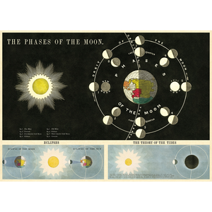 An art print and paper wrap which features the phases of the moon