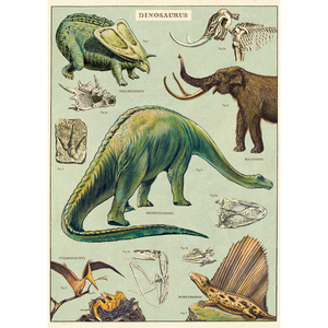 An art print and paper wrap which features various species of dinosaur.