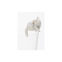 Load image into Gallery viewer, Kitan Club: Exotic shorthair