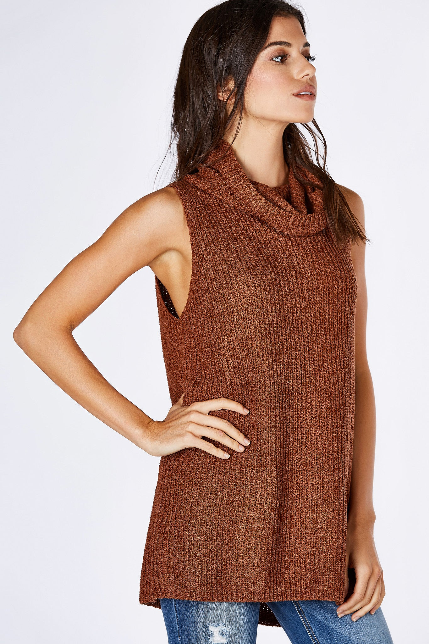 A staple piece for Autumn. Cozy turtleneck for style and warmth. Sleeveless to make it easy to layer under cardigans and light jackets. Straight hem with a trendy slit in the back for added detail. Pair with skinny jeans and ankle booties!