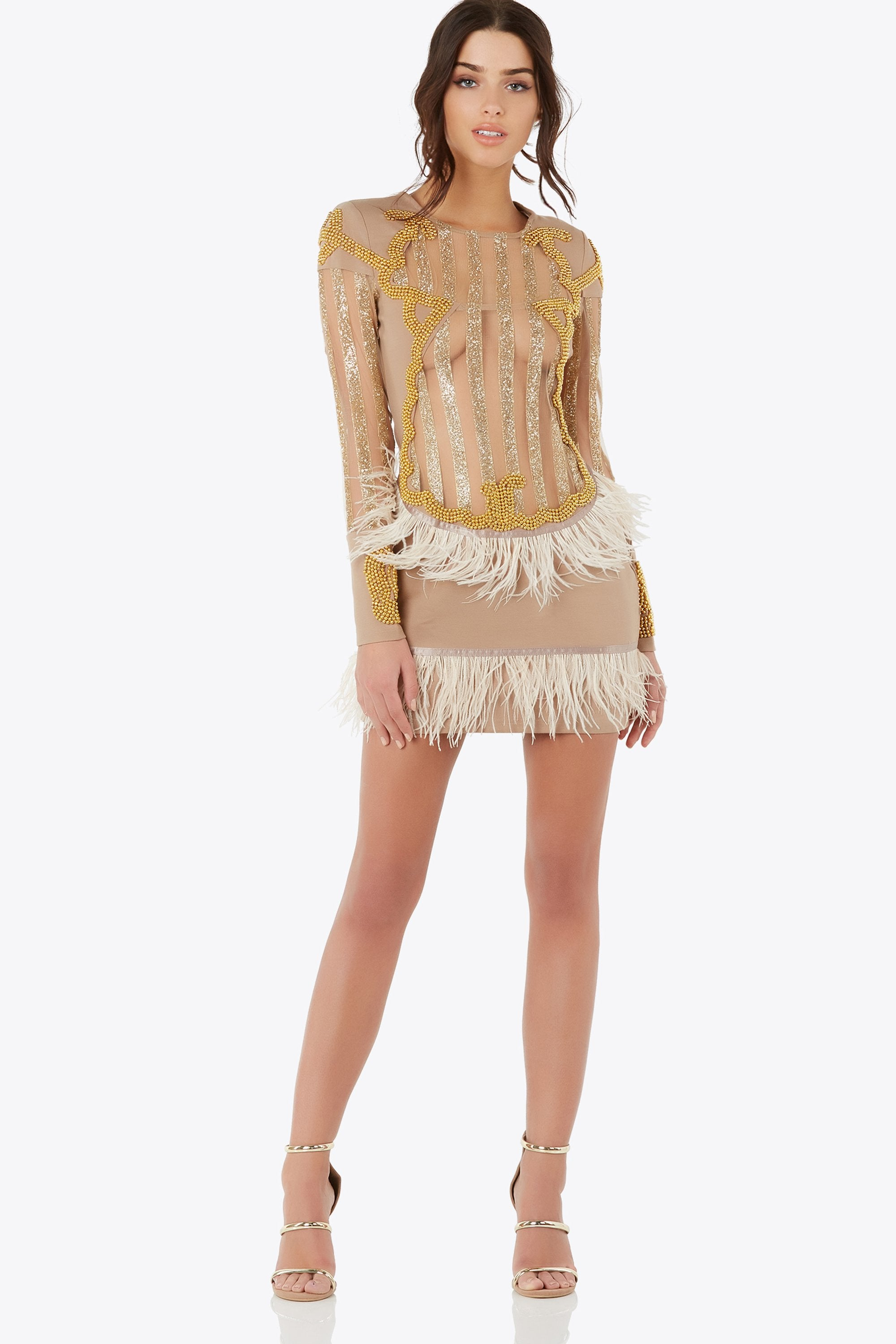 Gold Swan Mini Dress