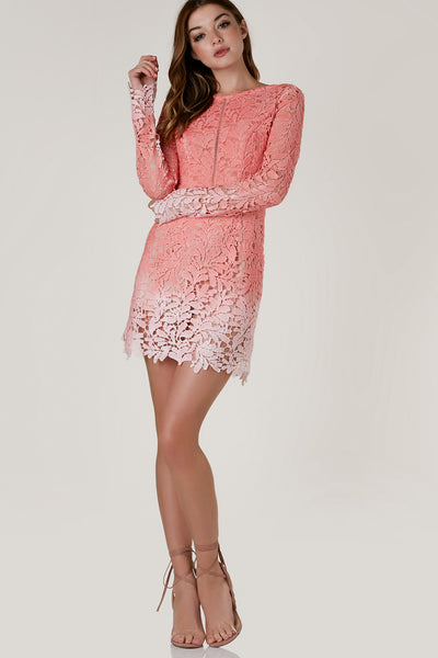 Stunning long sleeve crochet dress with full body lining and peek-a-boo detailing. Scooped back with exposed zipper and ombre finish.