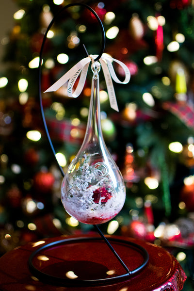 Holly Jolly Tear-Drop Bulb