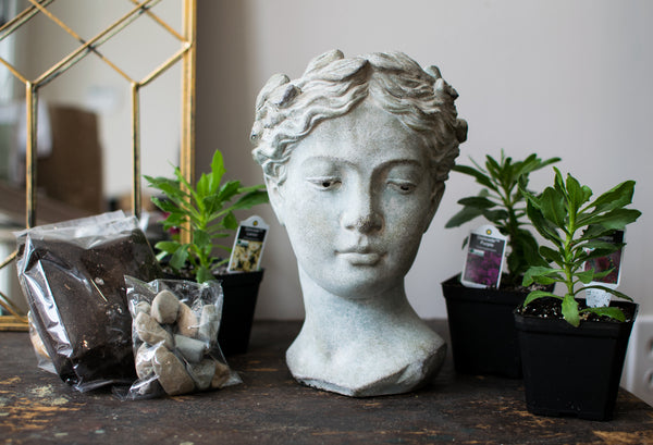 Athens - Goddess Head Garden Kit