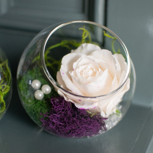 Eternal Rose Terrarium