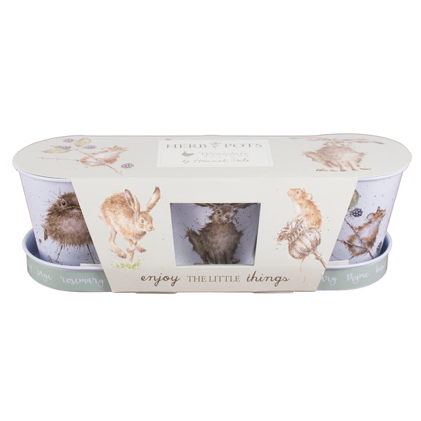 Set of 3 Herb Pots & Tray - Wrendale Mouse