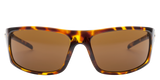Electric Tech One Gloss Tort Brown Polar Sunglasses EE11610642 SURF WORLD