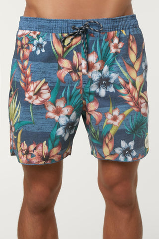 Oneill Hodge Podge Volley Cruzer Mens Boardshorts - Blue