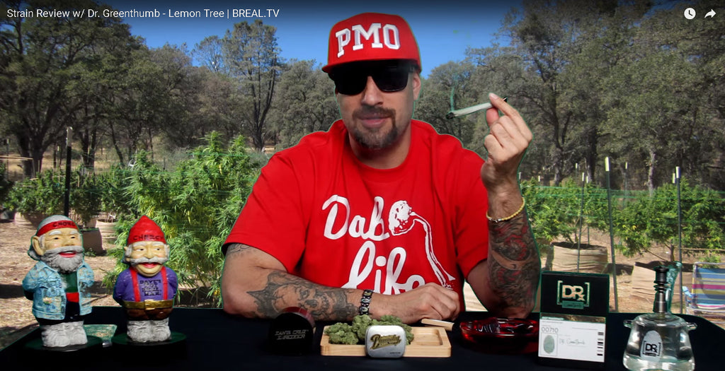 Strain Review w/ Dr. Greenthumb - Lemon Tree | BREAL.TV