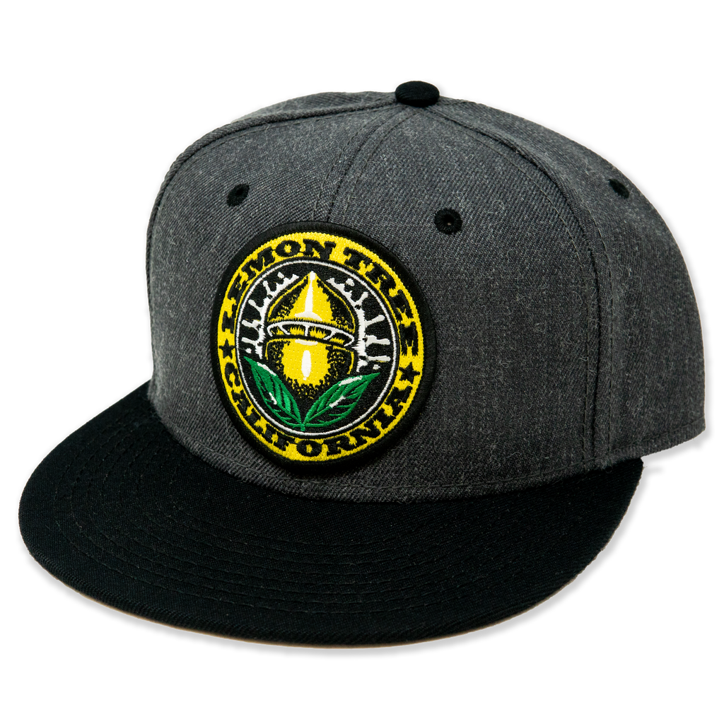 Lemon Tree California Seal Hat Grey and Black Bill