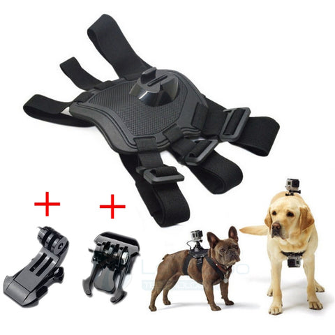 Go Pro Adjustable Dog Fetch Harness