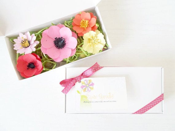 Seeded Paper Flower Gift Boxes