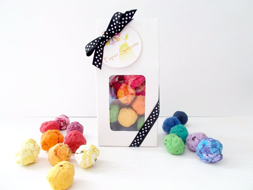 Seed Bomb Gift Box, Unique Stocking Stuffer, Teacher Gift, Hostess Gift