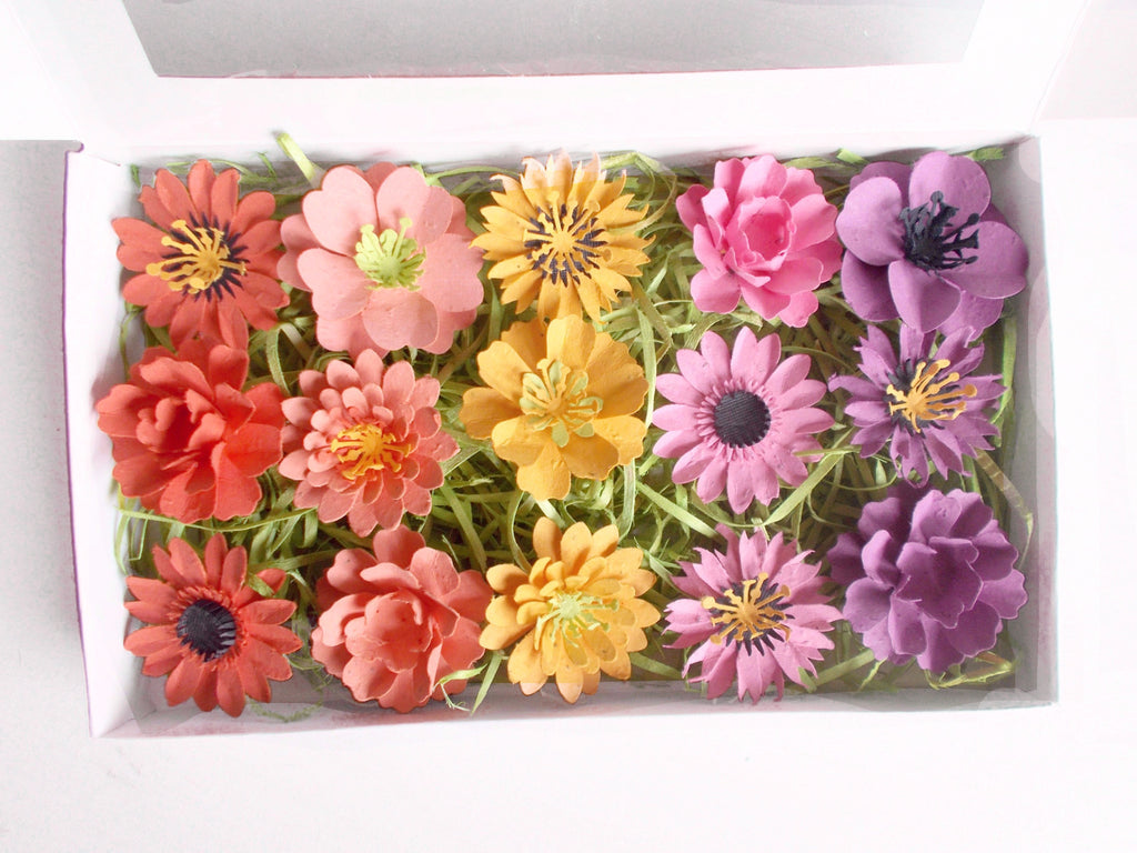 Seeded Paper Flowers Sunrise Collection Garden Lover's Gift Set