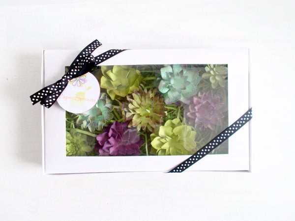 Seeded Paper Succulent Gardening Gift Set