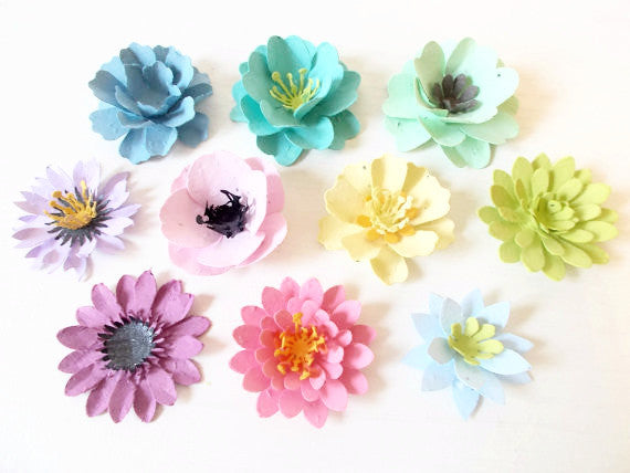 Plantable Paper Flowers Assortment of 10