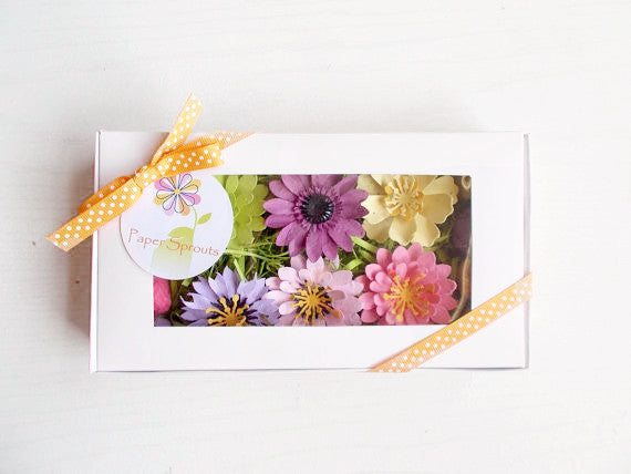 Unique Gardening Gift Set With Seeded Flowers and Seed Bombs
