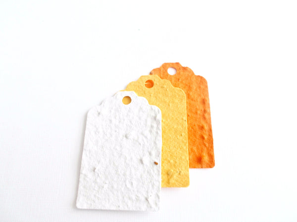 Orange Ombre Set of Plantable Paper Gift Tags Embedded With Wildflowers