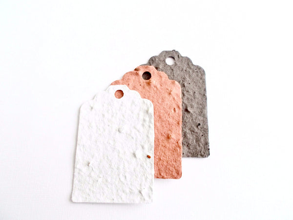 Eco Friendly Plantable Paper Gift Tags Neutral Ombre Set of 12