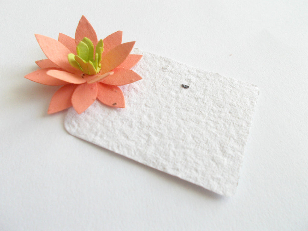 Tangerine Flower Place Cards - Set of 100 Star Flowers Made with Plantable Paper Embedded with Flower Seeds