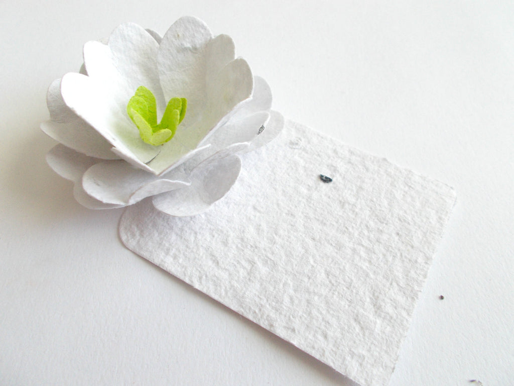 Wedding Place Cards - Escort Cards - Set of 50 White Roses - Plantable Paper Embedded With Wildflower Seeds