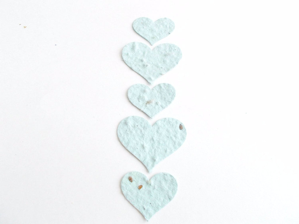 Pastel Blue Seeded Paper Hearts