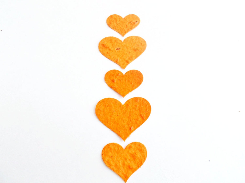 Orange Seeded Paper Hearts