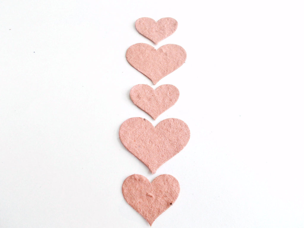 Light Terra Cotta Plantable Seed Paper Hearts