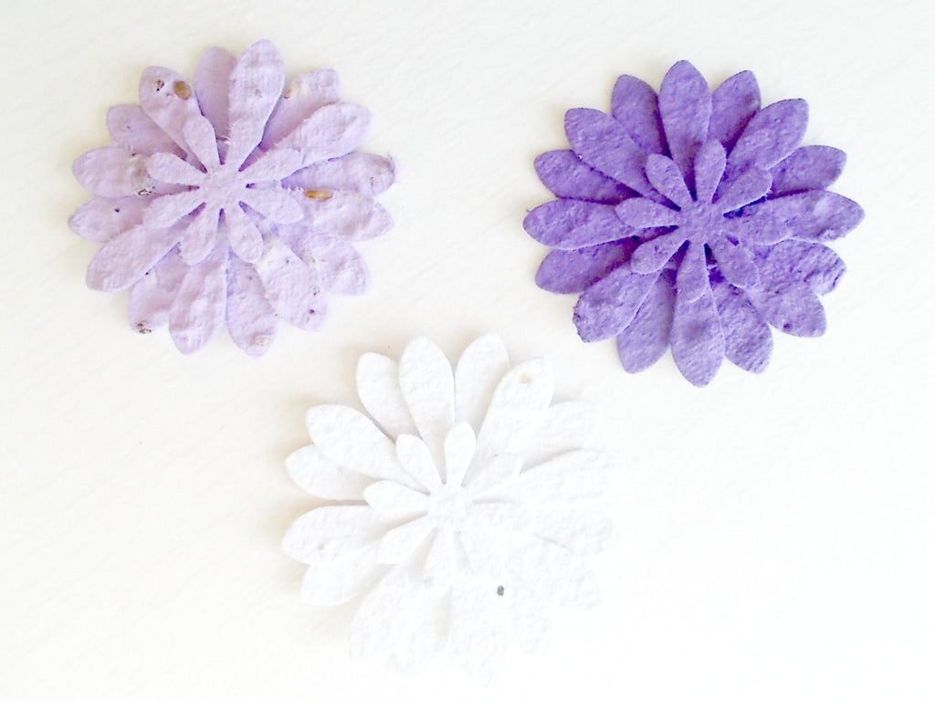 Eco Friendly Plantable Paper Daisy Flowers, Seeded Paper Flowers, Purple, Lavender and White Mix, Set of 12
