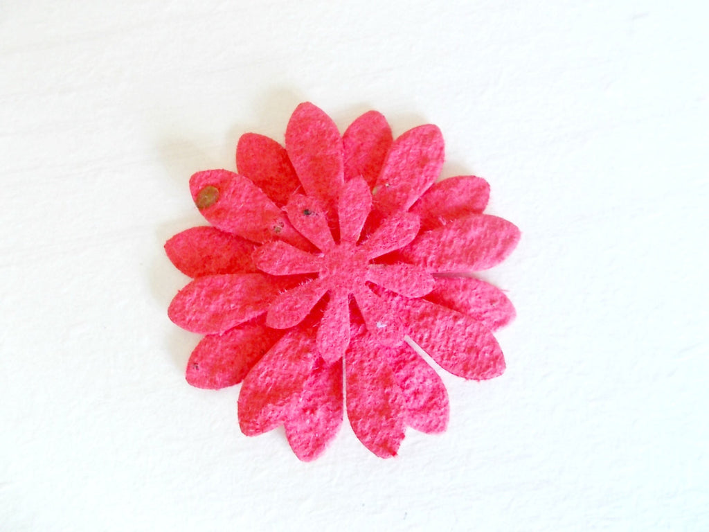 Red Zinnia Flower Favors, Set of 12, Eco Friendly Paper Embedded With Wildflower Seeds - Paper Daisies