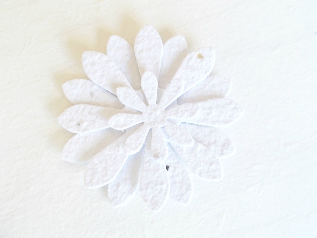 White Wedding Flowers, Unique Daisy Blossoms Made With Plantable Paper