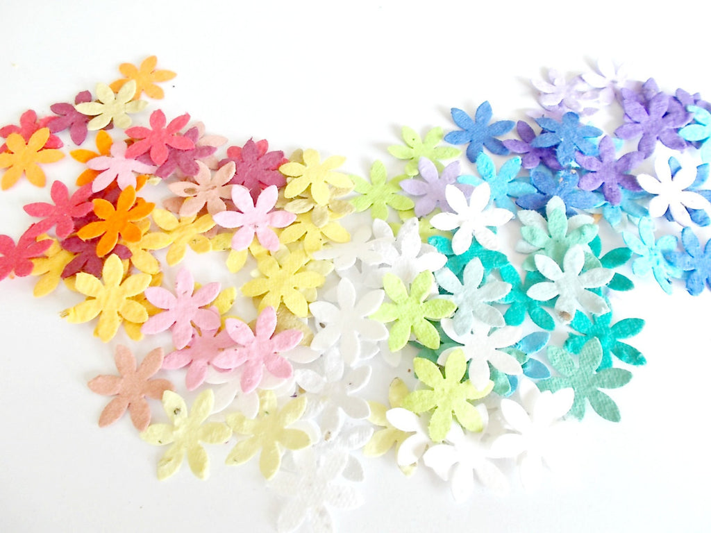 50 Daisy Confetti Made with Plantable Paper - Plant and Grow Wildflowers