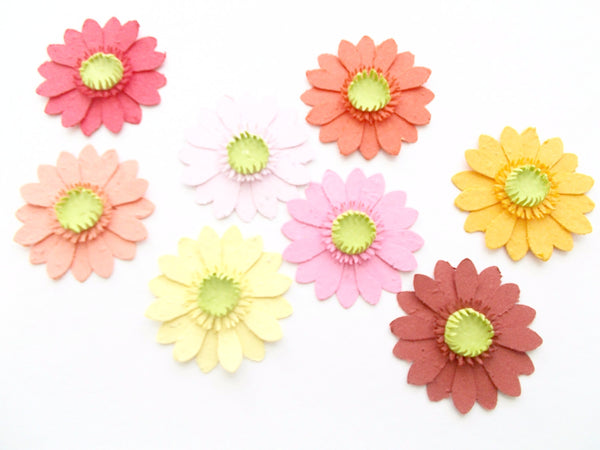 Gerbera Daisies Made from Seeded Paper Embedded With Flower Seeds - Plant and Grow!