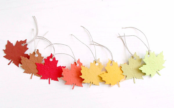 Maple Leaf Gift Tags - Set of 8 Assorted Fall Colors Made From Plantable Paper