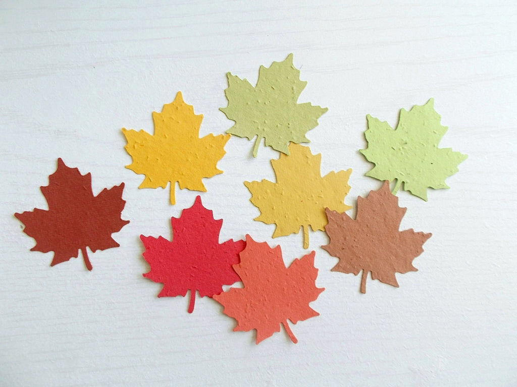 50 Large Maple Leaf Cut Outs Eco Friendly Leaves Made From Paper